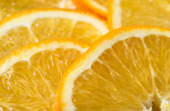 Fruktapelsin royaltyfri foto