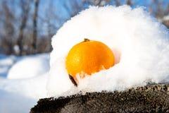 Fruktapelsinen ligger på en konkret tjock skiva i snön arkivbild