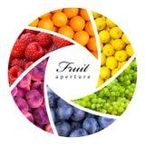 Fruktbakgrunder fotografering för bildbyråer