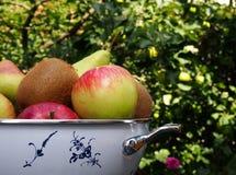 Fruktbunke Arkivbilder