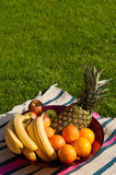 Fruktbunke Royaltyfri Foto
