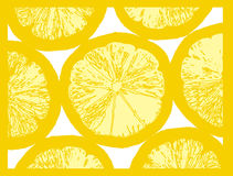 fruktcitronskiva stock illustrationer