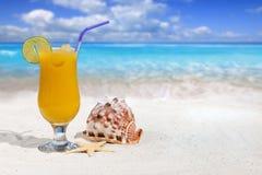 Fruktcoctail med apelsinen och drickasugrör Fotografering för Bildbyråer