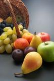 frukter Arkivfoto