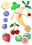 frukter Arkivbilder