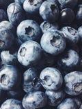 Frukter sommar smak svart blåbär Royaltyfria Bilder