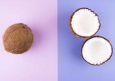 Frukter av kokosnötter på färgrik bakgrund Arkivfoto