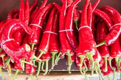 Frukter av peppar för den varma chili i packar ligger på tabellen, räknaren, menyidén, kommersiell bakgrund Royaltyfri Fotografi