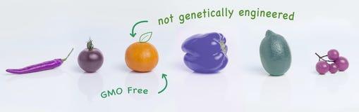 Frukter begrepp av biologisk odling, ingen GMO arkivfoton