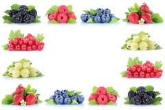 Frukter för bär för druvor för röd vinbär för bärjordgubbeblåbär arkivfoton