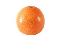Frukter för en hela grapefrukt Royaltyfria Bilder