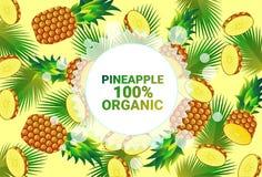 Frukter för färgrikt för cirkel för ananasfrukt mönstrar bantar organiska over nya utrymme för kopia sund livsstil för bakgrund e vektor illustrationer