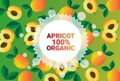 Frukter för färgrikt för cirkel för aprikosfrukt mönstrar bantar organiska over nya utrymme för kopia sund livsstil för bakgrund  royaltyfri illustrationer