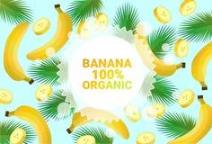 Frukter för färgrikt för cirkel för bananfrukt mönstrar bantar organiska over nya utrymme för kopia sund livsstil för bakgrund el royaltyfri illustrationer