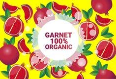 Frukter för färgrikt för cirkel för granatröttfrukt mönstrar bantar organiska over nya utrymme för kopia sund livsstil för bakgru stock illustrationer
