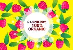 Frukter för färgrikt för cirkel för hallonfrukt mönstrar bantar organiska over nya utrymme för kopia sund livsstil för bakgrund e vektor illustrationer