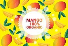 Frukter för färgrikt för cirkel för mangofrukt mönstrar bantar organiska over nya utrymme för kopia sund livsstil för bakgrund el vektor illustrationer