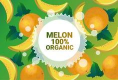 Frukter för färgrikt för cirkel för melonfrukt mönstrar bantar organiska over nya utrymme för kopia sund livsstil för bakgrund el royaltyfri illustrationer