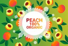 Frukter för färgrikt för cirkel för persikafrukt mönstrar bantar organiska over nya utrymme för kopia sund livsstil för bakgrund  vektor illustrationer