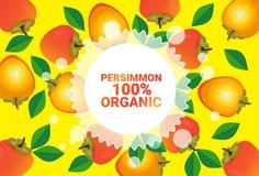 Frukter för färgrikt för cirkel för persimonfrukt mönstrar bantar organiska over nya utrymme för kopia sund livsstil för bakgrund vektor illustrationer