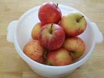 Frukter i behållare Arkivbild