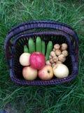 Frukter i korg Fotografering för Bildbyråer