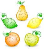 frukter inställd stylized vektor royaltyfri illustrationer