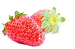 frukter isolerade jordgubbar Royaltyfria Foton