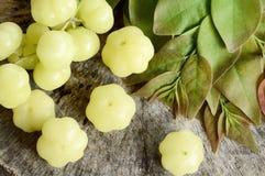 Frukter med det höga innehållet för vitamin C Royaltyfri Fotografi