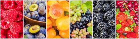 Frukter och bär collage Arkivfoton