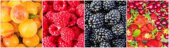 Frukter och bär collage Royaltyfri Foto