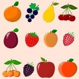 Frukter och bär som samlas i en uppsättning Arkivfoto
