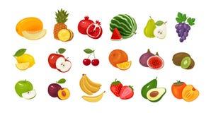Frukter och bär, uppsättning av kulöra symboler olivgrön för olja för kök för kockbegreppsmat ny över hällande restaurangsallad o Fotografering för Bildbyråer