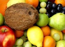 Frukter och coco Royaltyfri Foto