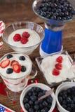 Frukter och glass med 4th det juli temat Royaltyfri Bild
