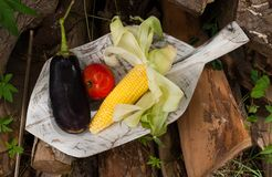 Frukter och grönsaker på en trätjänstledighet arkivbild