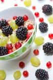 Frukter och havremjöl Royaltyfria Foton