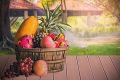 Frukter på det trä Royaltyfri Bild