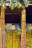Frukter shoppar i Katmandu, Nepal Arkivbilder