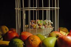 Frukter som omger en bur med bifogade sötsaker arkivfoto