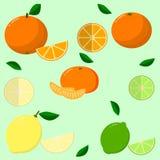 Frukter som samlas i en uppsättning Arkivbilder