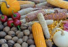 Frukterna av hösten arkivbild