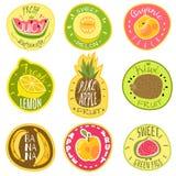 Fruktetiketter Mallar för vektor för tecknad film för text för klistermärke för tryck för logo för emblem för lantgård för mat fö vektor illustrationer