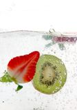 fruktfärgstänkfjäder Arkivbilder