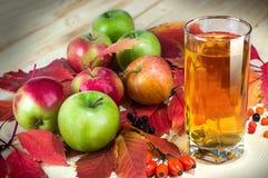 Fruktfruktsaft, mogna äpplen på den gamla trätabellen ny frukt från trädgården Selektivt fokusera Kopieringsutrymmebakgrund arkivfoton