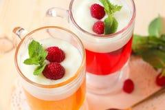 Fruktgelé med yoghurt, hallon och mintkaramellen arkivbilder
