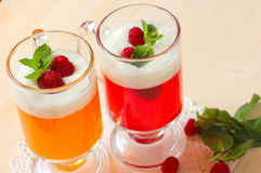 Fruktgelé med yoghurt, hallon och mintkaramellen royaltyfria bilder