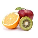 fruktgrupp Arkivfoto