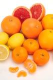 fruktgrupp Royaltyfri Bild