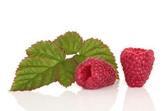frukthallon arkivfoton